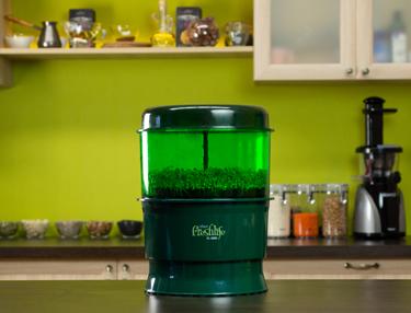 Проращиватель Tribest Freshlife FL-3000 в интерьере кухни