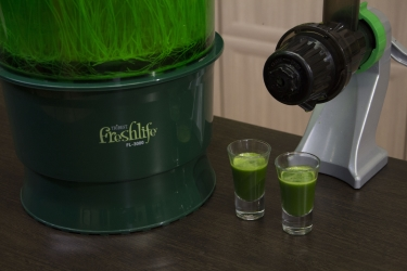 Полученный сок из витграсса с помощью соковыжималки Tribest Z-Star Z-710