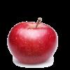 Сок из садовых яблок