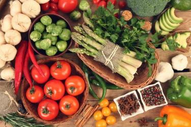 Тема вегетарианства