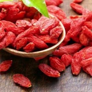 Полезные свойства и применение ягод годжи