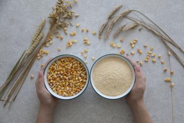 Купить мельницу для зерна для дома