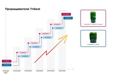 Проращивание проростков в Tribest Freshlife FL-3000