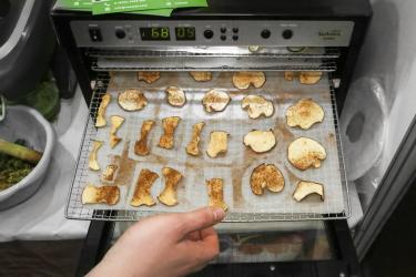Сушёные яблоки в электрической сушилке для овощей и фруктов