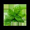 Соковыжималка для травы купить