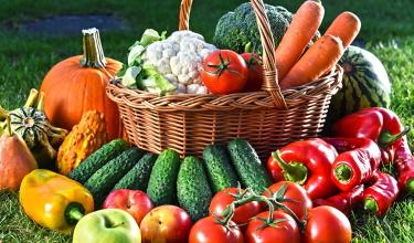 Овощи под зиму