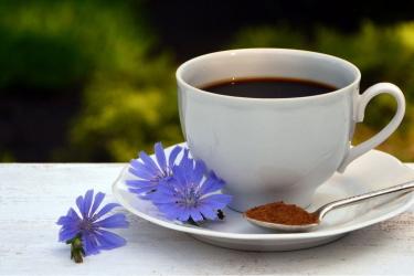 Цикорий, заменяющий кофе