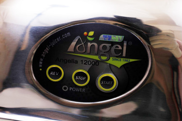 Angel 12000