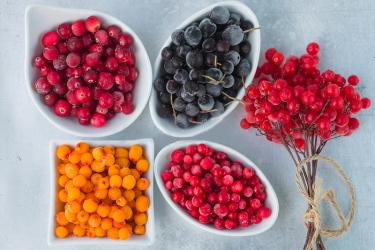 Засушить ягоды