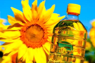 Польза и вред подсолнечного масла