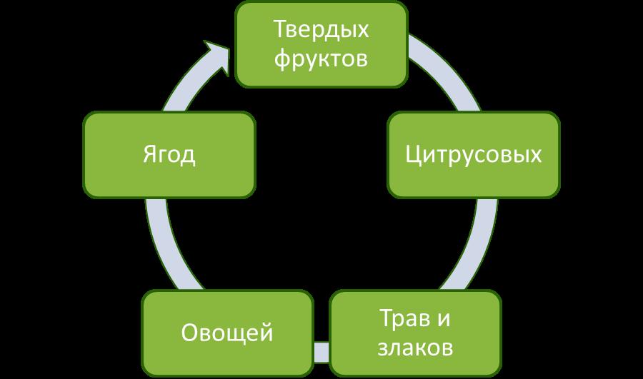 Возможности Hurom DBE04